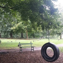 Historic Fair Hill tire swing